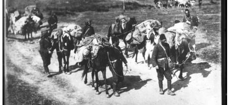 Aux origines de la premi re guerre mondiale verdun - Salon du livre des balkans ...